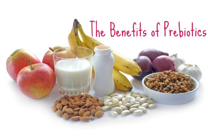 benefits-of-prebiotics